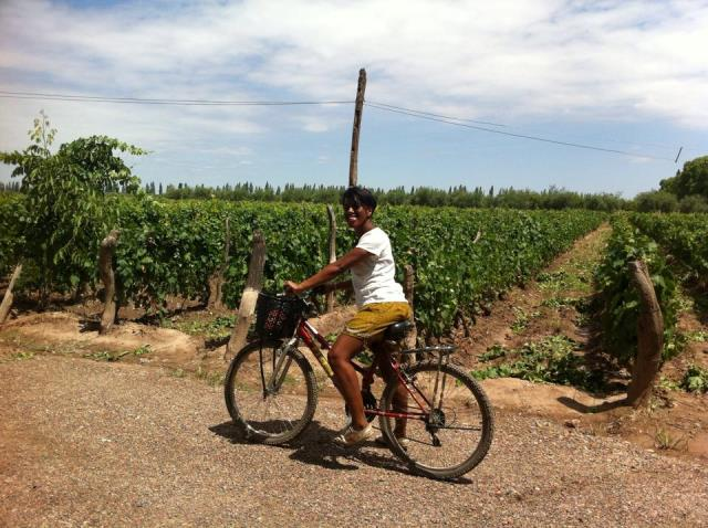 Cycling around Mendoza, Argentina