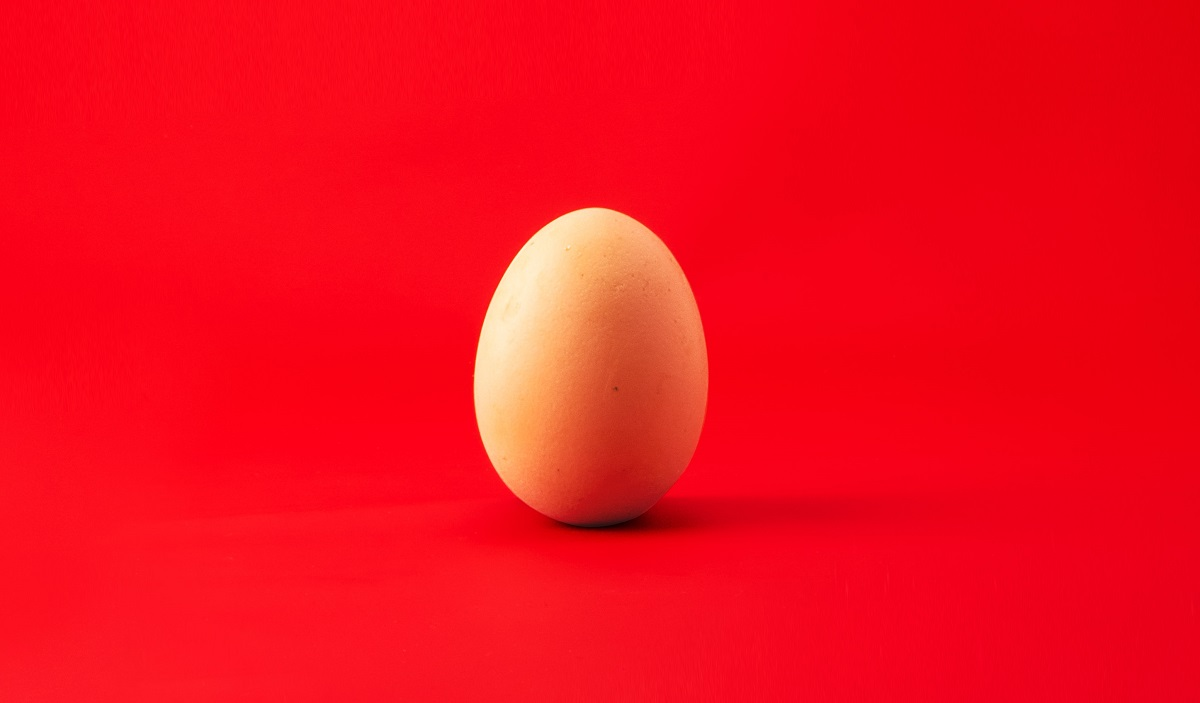 Picture of an egg on red background