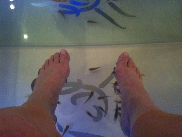 Image of feet in tank during fish pedicure