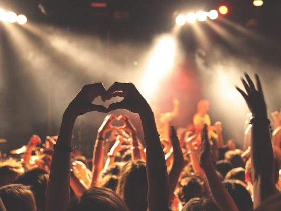 Party goers at a concert