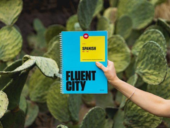 Language guide book
